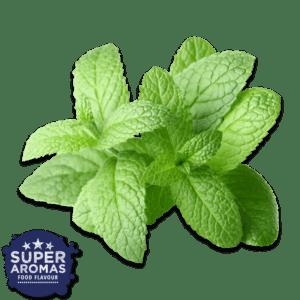 Super Aromas Natural Mint Natürliche Minze Lebensmittelaromen.eu