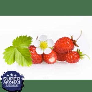 Super Aromas Natural Wild Strawberry Natürliche Walderdbeere Lebensmittelaromen.eu